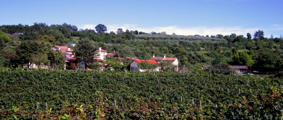 Panorama casa
